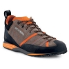 Light Hiking Boots or Trekking Shoes